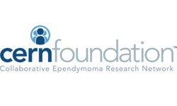 Cern Foundation